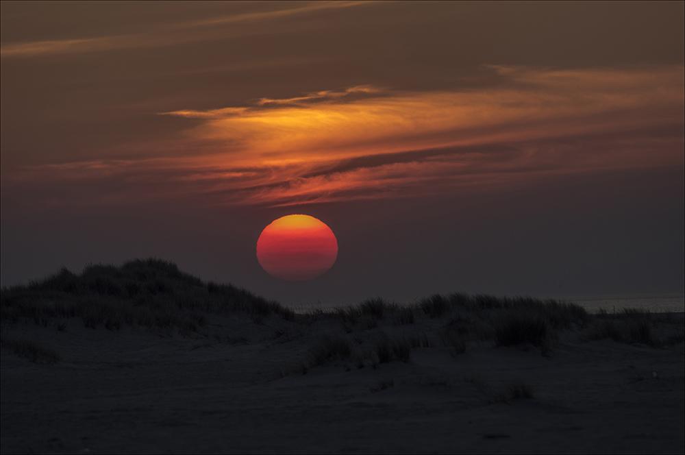 Sonnenuntergang in den Dünen am Ellenbogen auf der Nordseeinsel Sylt (Landkreis Nordfriesland)