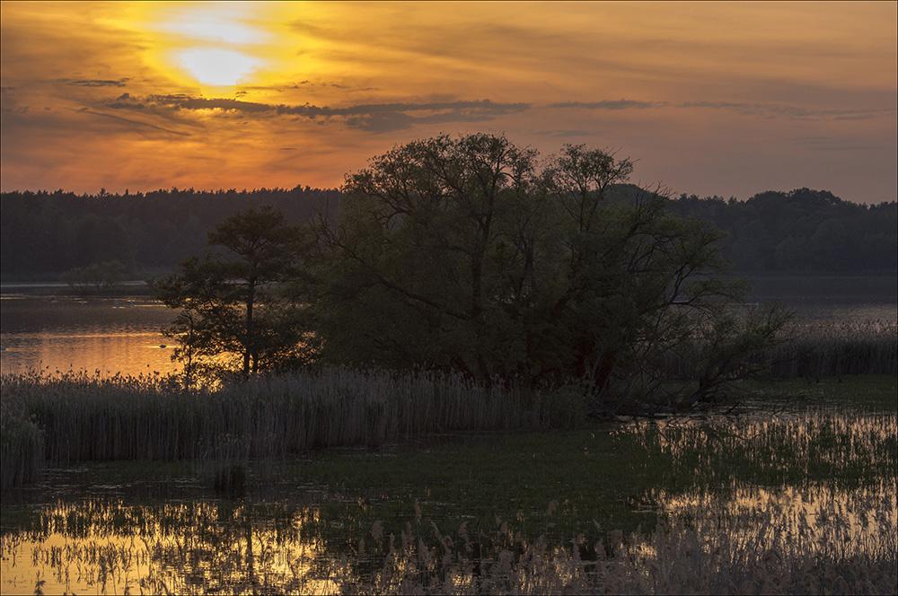 Sonnenuntergang am Beobachtungsturm an den Teichwiesen in Tauer (Landkreis Görlitz) in der Oberlausitz.
