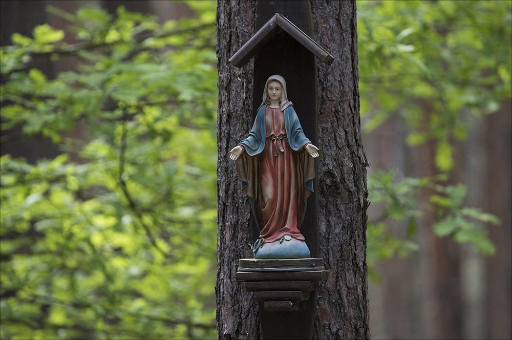 Eine Mariafigur (Madonnafigur) im Wald am Ortsrand von Commerau (Landkreis Bautzen) in der Oberlausitz.