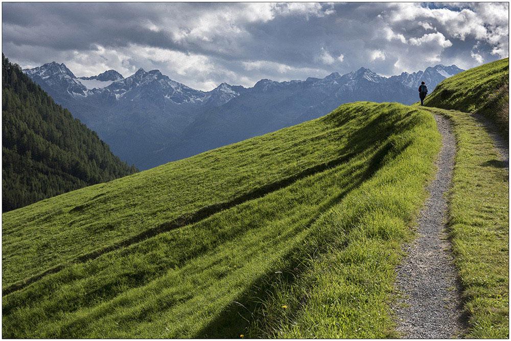 Ein Wanderweg auf einer Almwiese oberhalb von Niederthai in 1600 Meter Höhe in den Ötztaler Alpen in Tirol, Österreich. Das Gebiet gehört zum Naturpark Ötztaler Alpen.