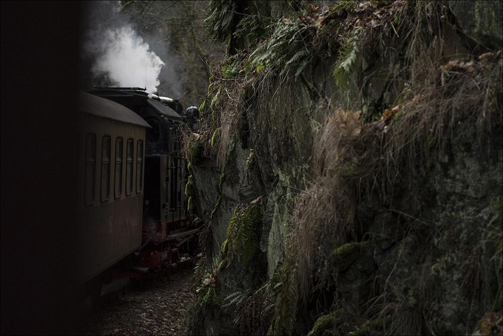 Die historische Dampflok 99 6001 zieht einen Personenzug auf der Schmalspurstrecke der Selketalbahn bei Mägdesprung (Landkreis Harz) im Harz. Die Dampflok wurde 1939 bei Krupp in Essen gebaut. Die Höchstgeschwindigkeit beträgt 50 km/h.