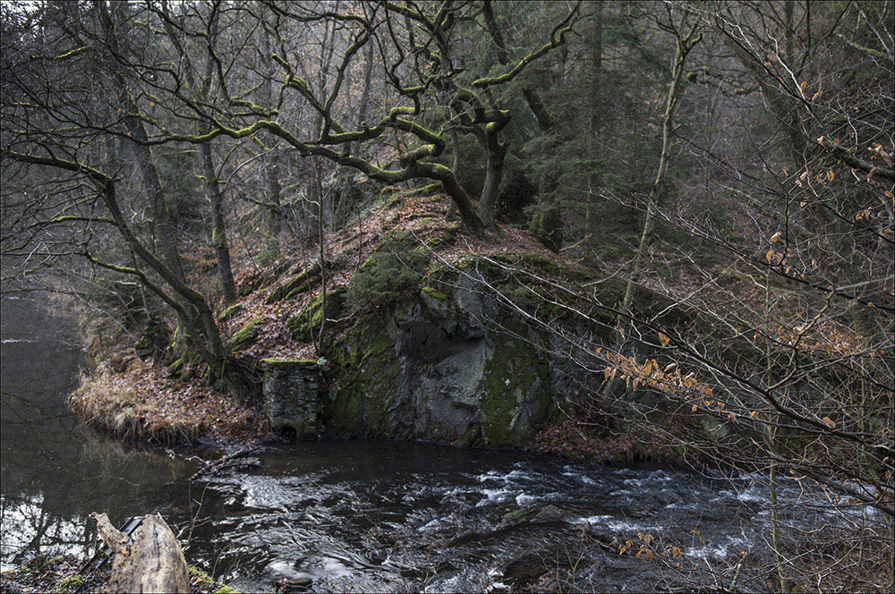 Die Selke im Naturschutzgebiet Selketal bei Mägdesprung (Landkreis Harz) im Harz. Das Selketal zeichnet sich durch naturnahe Bachstrukturen und eine natürliche Gewässerdynamik aus. An dieser Stelle wurde 1828 ein Stauteich für die Eisenhütte Mägdesprung angelegt. Das Wehr wurde 1955 bei einem Starken Hochwasser zerstört.
